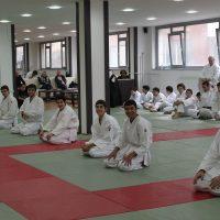 Gençler için Aikido Programları  (12-18)