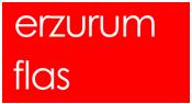 erzurumflash-logo